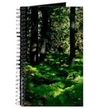Mogollon Rim Wild Ferns Journal