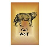 Young Cherokee Wolf Postcards (Package of 8)