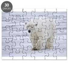 "Endangered Species ""Polar Bear""Puzzle"