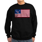 Dino USA Sweatshirt (dark)