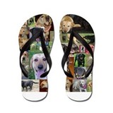 HOTLab Collage Flip Flops