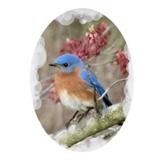 Bluebird Eastern Ornament (Oval)