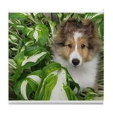 Puppy in the Leaves Tile Coaster