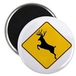 Deer crossing Magnet