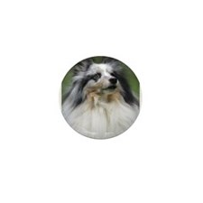 Cute Blue merle Mini Button (100 pack)