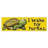 I Brake for Turtles Bumper Car Sticker