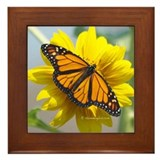 Monarch Sunflower Framed Tile