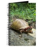 Three-toed Box Turtle Journal