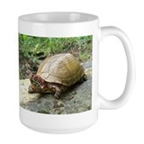 Three-toed Box Turtle Mug