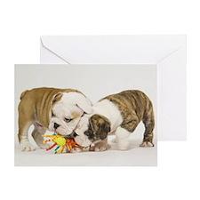 BULLDOG PUPPIES PLAYING Greeting Card