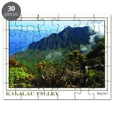 Kalalau Valley (16x20)
