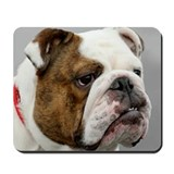 ENGLISH BULLDOG GRUMP Mousepad