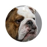 ENGLISH BULLDOG GRUMP Ornament (Round)