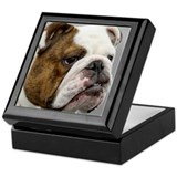ENGLISH BULLDOG GRUMP Keepsake Box