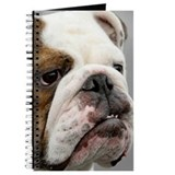 ENGLISH BULLDOG GRUMP Journal