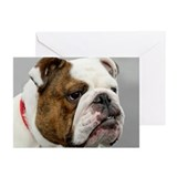 ENGLISH BULLDOG GRUMP Greeting Cards (Pk of 10)