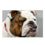 ENGLISH BULLDOG GRUMP Postcards (Package of 8)
