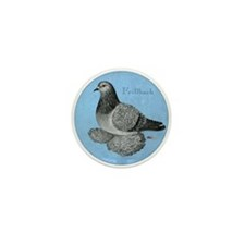 Frillback Pigeon Grizzle Mini Button (10 pack)