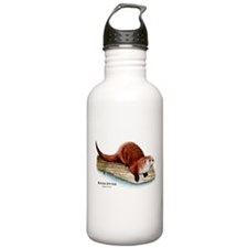 Northern River Otter Water Bottle