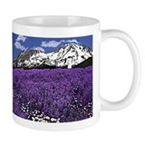 Mount Shasta wild Lupines on Mug