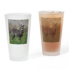 8 point Buck Drinking Glass