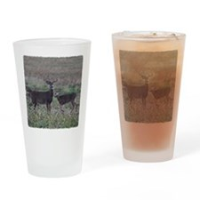 Buck and doe 2 Drinking Glass