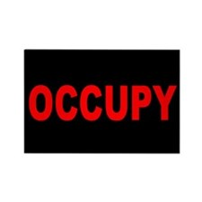 Occupy Wall Street: Rectangle Magnet (10 pack)
