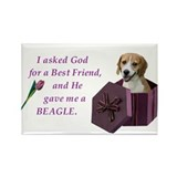 God Gave Me A Beagle Rectangle Magnet