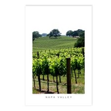 Napa Vineyard, Spring Postcards (Package of 8)