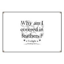 Why am I covered in feathers? Banner