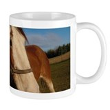 Horse Coffee Mugshot Coffee Mug