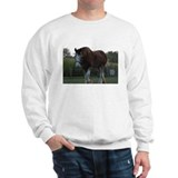Horse Photo Sweatshirt
