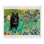 Irises / Schipperke #2 Throw Blanket