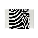 zebra print Rectangle Magnet (100 pack)