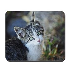Kitty Mousepad