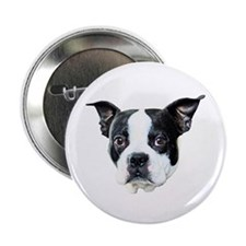"Boston Terrier 2.25"" Button (10 pack)"