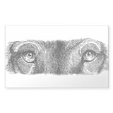 Wolf Eyes Rectangle Decal