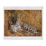 Karula Throw Blanket