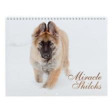 Miracle Shilohs 2012 Wall Calendar