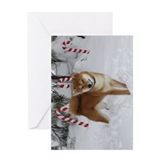 Zen Holiday Greeting Card