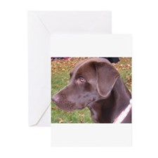 Chocolate Lab Greeting Cards (Pk of 10)