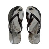 Crazy Aspen Flip Flops
