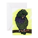 Maxi Pionus Art Greeting Cards (Pk of 10)