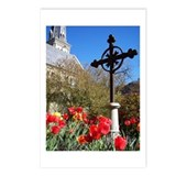 Spring Tulip Postcards (Pk. of 8)