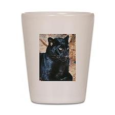 Black Leopard Portrait Shot Glass