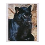 Black Leopard Portrait Throw Blanket