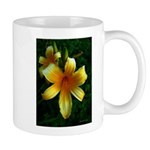 daylily daydreams v.3 Mug