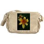 daylily daydreams v.3 Messenger Bag