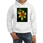 daylily daydreams v.3 Hooded Sweatshirt
