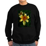 daylily daydreams v.3 Sweatshirt (dark)